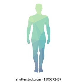 abstract geometrical pattern inside human body, vector