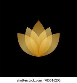 Abstract gold and transparent lotus logo design