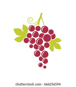 Abstract grape with leaves on white background. Red grape. Vector illustration