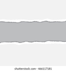 Abstract grey paper background with realistic torn edges and shadow. Vector illustration.