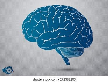 Abstract human brain