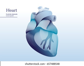 Abstract illustration of anatomical human heart