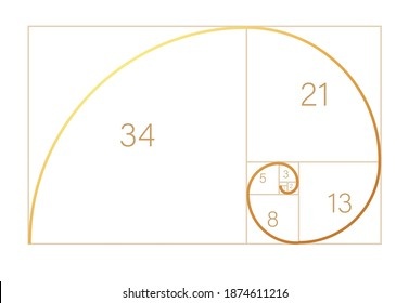 Abstract illustration with golden ratio on black background. Spiral pattern. Line drawing. Vector illustration.