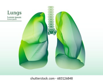 Abstract illustration of green lungs