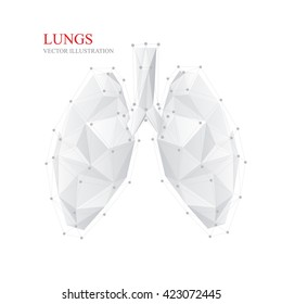 Abstract Illustration of human lung, vector.