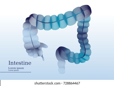 Abstract illustration of intestine