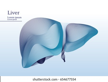 Abstract illustration of liver