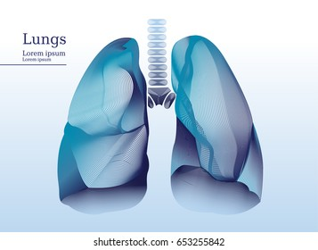 Abstract illustration of lungs