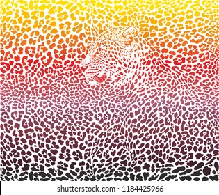 abstract illustration pattern background leopard skins and heads