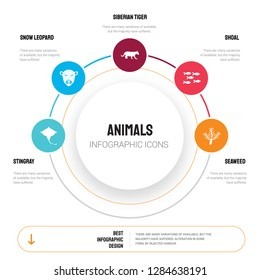 Abstract infographics of animals template. Stingray, Snow leopard, Siberian tiger, Shoal, Seaweed icons can be used for workflow layout, diagram, business step options, banner, web design.