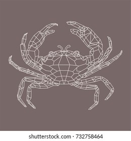 abstract isolated polygonal sea crab