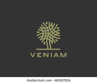 Abstract linear vector tree logo icon design. Universal luxury premium solid symbol. Creative park nature bio relax spa sign logotype.