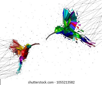 Abstract of Low poly couple hummingbird with point connecting network,animal geometric concept,vector.