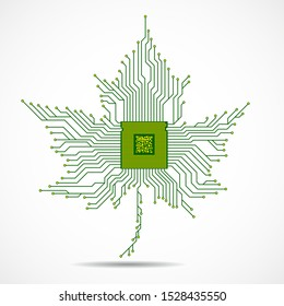 Abstract maple leaf with microprocessor inside, circuit board