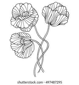 abstract monochrome sketch floral pattern. surface texture. Elegant pattern with hand drawn decorative flowers,design elements. Adult coloring book page