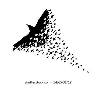 Abstract mosaic of birds. Flying Birds. Vector illustration