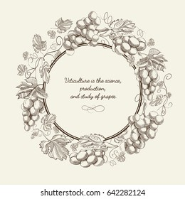 Abstract natural sketch template with text round frame and bunches of grapes on light background vector illustration