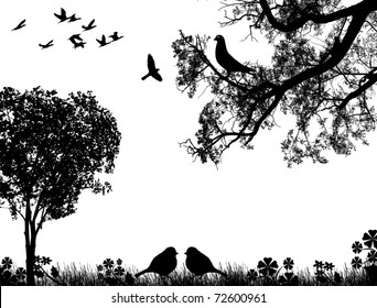 Abstract nature background with birds and tree, in black and white, vector illustration