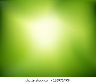 Abstract nature blurred background.   Green gradient with sunlight backdrop. Vector illustration. Ecology concept for your graphic design, banner or poster