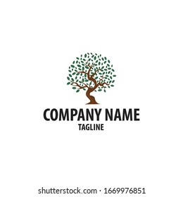 abstract oak tree logo. Can be used for landscape companies