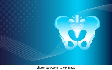 Abstract orthopedics traumatology background. Hip bones structure. Human anatomy scheme. Main pelvic bones - sacrum ilium coccyx pubis ischium. For medical, science and technology, the hospital.