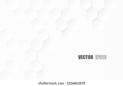 Abstract paper Hexagon white Background ,light and shadow .Vector