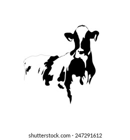 Abstract picture black and white cow on a white background