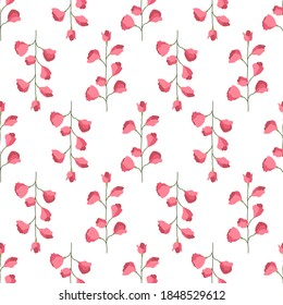 Abstract with pink sweet peas seamless pattern for decoration design. Floral illustration. Isolated vector art.