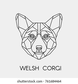 Abstract polygon vector dog. Geometric linear isolated head Welsh Corgi.