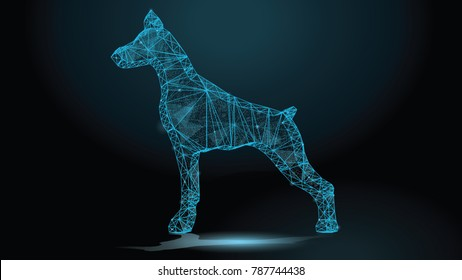 Abstract polygonal image of a Doberman dog silhouette on a dark background. Concept pet polygon lines and points. Dog low poly.