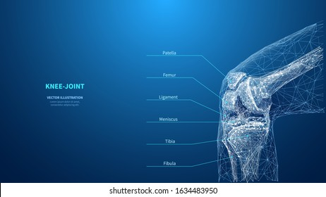 Abstract polygonal knee-joint on blue background. Infographic medicine technology innovation concept. Low poly wireframe digital skeleton of human. A knee. Bones from polygons lines and connected dots