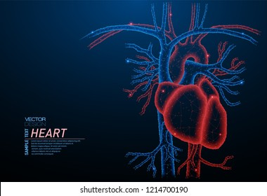 Abstract polygonal light of healthy heart - human organ. Business wireframe mesh spheres from flying debris. Medical concept. Blue structure style vector illustration.