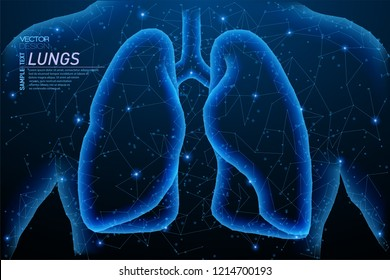 Abstract polygonal light of healthy lungs - human organ. Business wireframe mesh spheres from flying debris. Medical concept. Blue structure style vector illustration.