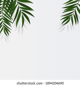 Abstract Realistic Green Palm Leaf Tropical Background. Vector illustration