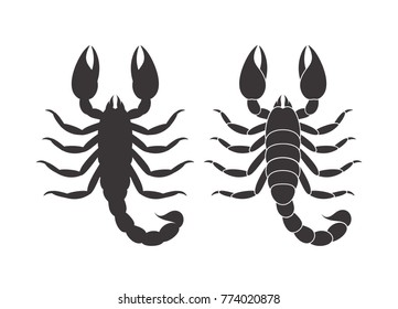 Abstract scorpion. Isolated scorpion on white background. EPS 10. Vector illustration