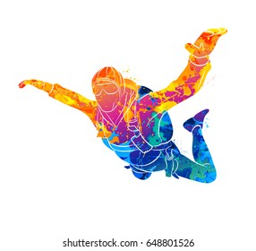Abstract skydiver paint