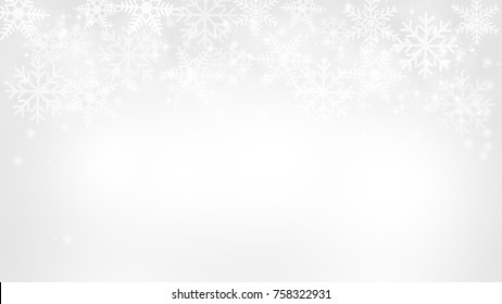 Abstract Snow Flake White and Gray Vector Backgrounds