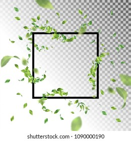 Abstract square frame with flying leaves. Vector background with blurred transparent elements