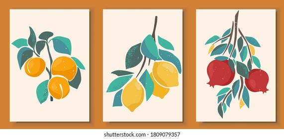 Abstract still life in pastel colors posters. Collection of contemporary art. Abstract paper cut elements, fruits and berries for social media, postcards, print. Hand drawn apricot, lemon, pomegranate