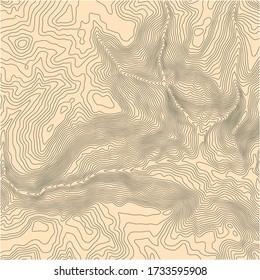 Carte topographique vectorielle abstraite avec des lignes d'élévation et un arrière-plan jaune