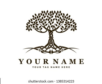 ABSTRACT TREE AND ROOT LOGO WITH ANCIENT GREEK STYLE Abstract celtic tree and root vector for logo template