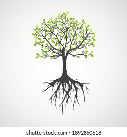 Abstract tree with roots. Vector outline illustration. Plant in Garden.