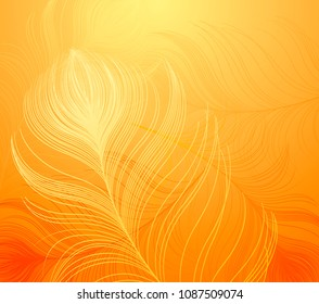 Abstract vector background with colorful peacock feathers