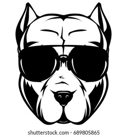 Abstract vector black and white illustration portrait of fighting dogs. Head of dog breed pit bull in sunglasses.
