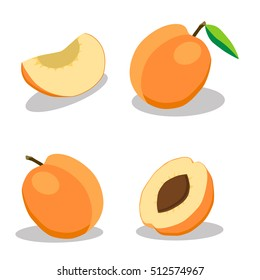 Abstract vector icon illustration of logo for whole ripe fruit orange apricot, cut sliced. Apricot pattern consisting of label, natural design, sign tropical food. Eat sweet fresh raw fruits  apricots