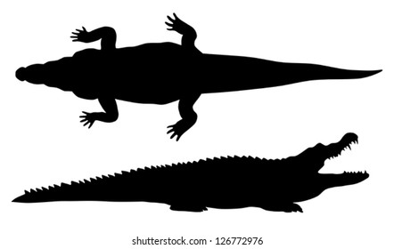 Abstract vector illustration of crocodile silhouette