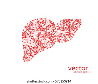 Abstract vector illustration of human liver with cirrhosis.