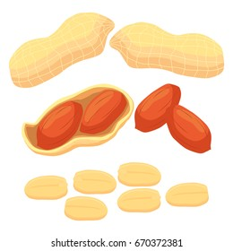 Abstract vector illustration logo whole ripe brown peanut nut, cut sliced, product hazel background. Nut Peanut pattern consisting of tag label, food peeled half nutlet, nutshell. Eating peanuts nuts.
