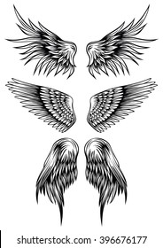 Abstract vector illustration wings set