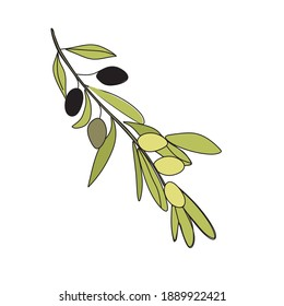 Abstract vector olive branch line drawing. Portrait minimalistic style. Botanical print. Nature symbol of cosmetics. Modern continuous one line art. Fashion print.